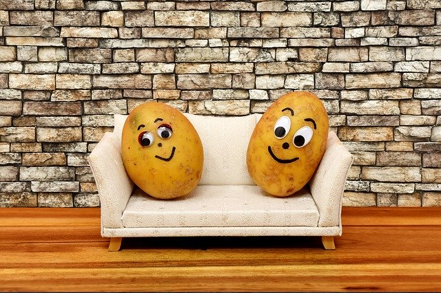 no motivation to do anything, two potatoes on a couch